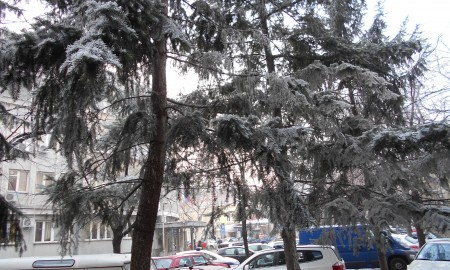Policija Niš sneg hronika