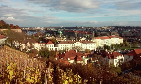 Prag Ceska vinogradi