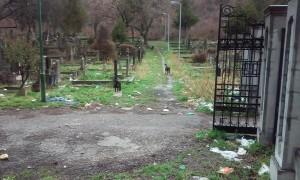 Nis, Staro groblje Psi koji su napali Zoricu i reportera Novosti
